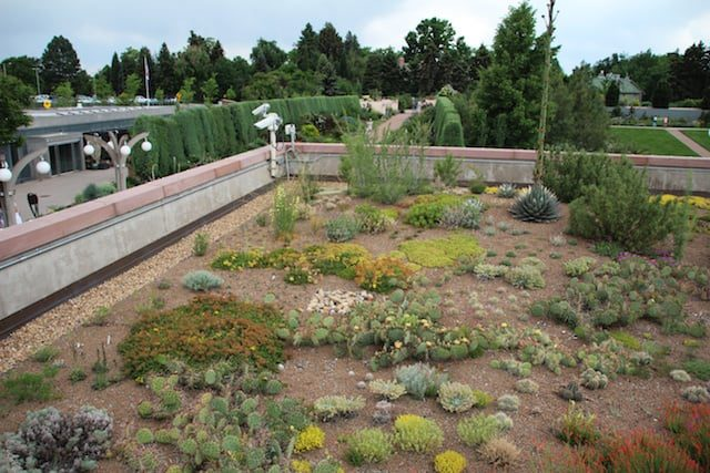 Green Roofs: A Top Design Trend of 2011