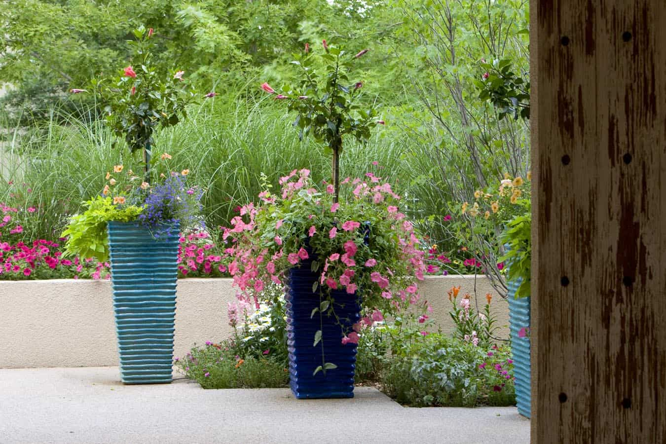 Flower Pots on Patios