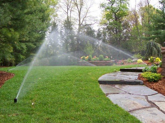 Have you turned your Sprinklers on yet?
