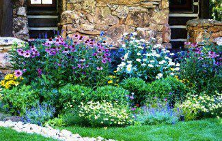 Water-Efficient Landscape Tips