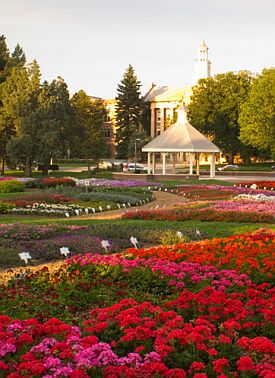 Colorado State's Annual Flower Trail Garden