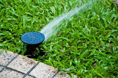 Sustainable Practices for Colorado Lawn Care