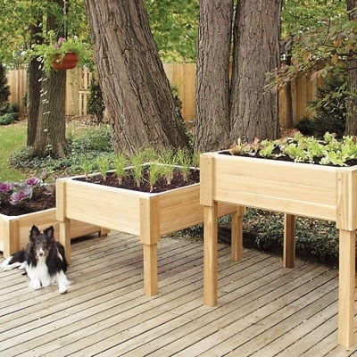 freestanding raised beds