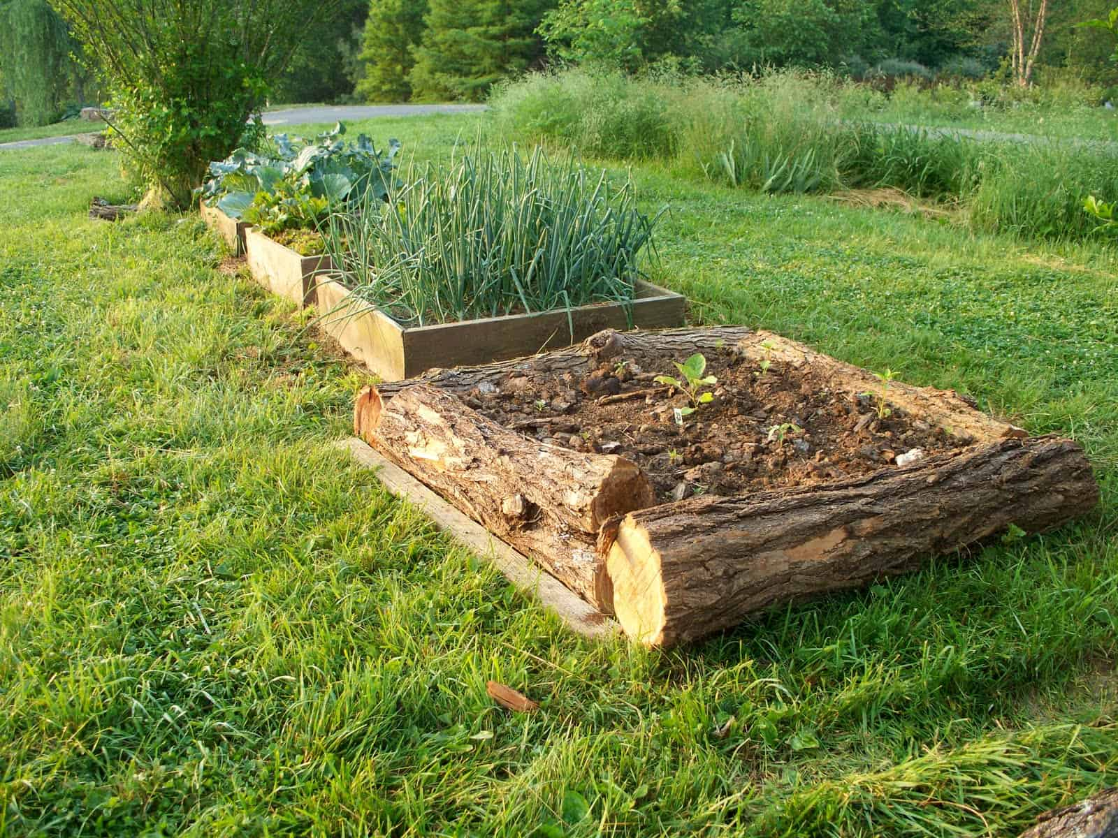 Use Readily Available Materials To Build Your Raised Bed Garden Tree