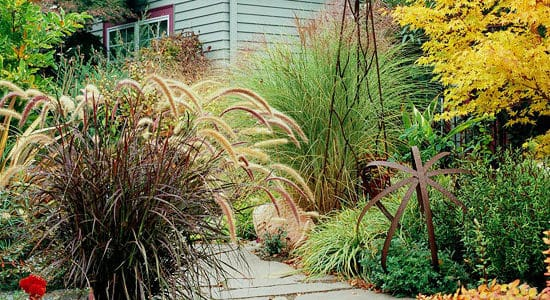Adding Color to Artful Gardens