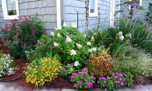 Refresh Your Front Yard Landscape