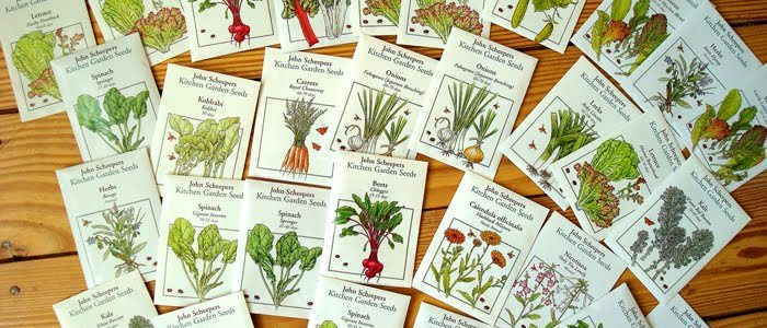 An Overview of Seeds for Spring