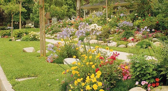Enhance Curb Appeal with a Colorful Garden Plan