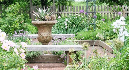 A Colorado Gardener's July Checklist
