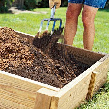 Our Expert Advice For Beginner Gardeners Lifescape Colorado