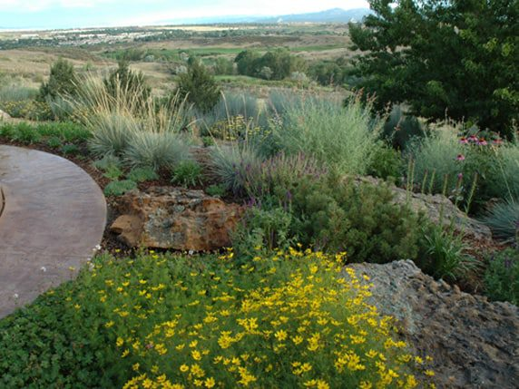 colorado landscaping services