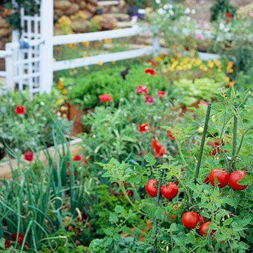 colorado landscaping service