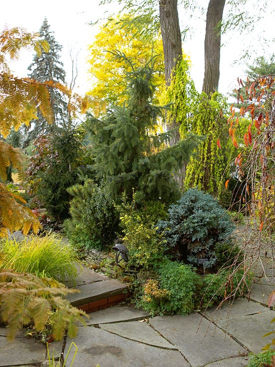 Prepare Your Colorado Garden For Winter Lifescape