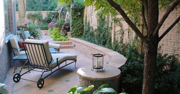Top Benefits of Growing Shrubs in Your Garden