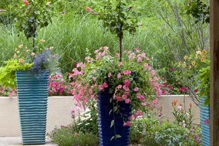 5 Container Gardening Mistakes to Avoid This Winter