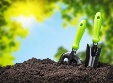 Healthy Landscapes Begin with Healthy Soils