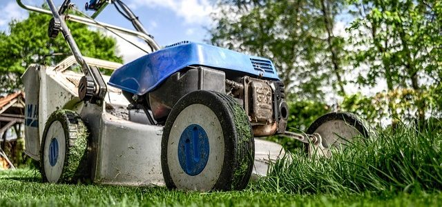 Preventative Landscape Maintenance: Final tips to prepare for the freeze