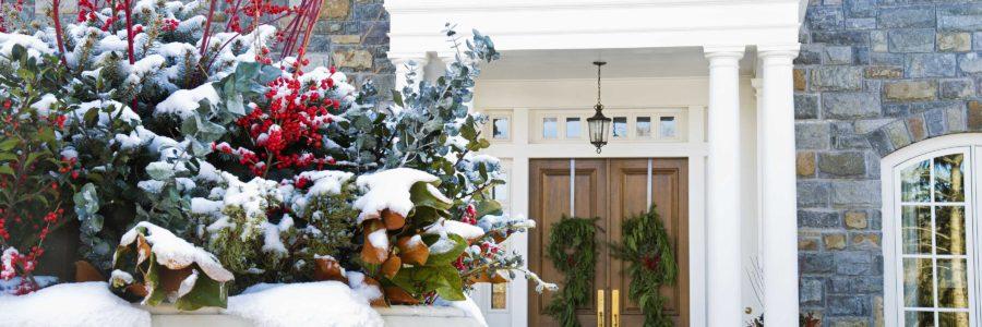 Colorado Fall and Winter Container Decor Tips