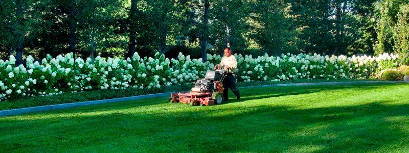 Winter Landscaping Preventative Maintenance