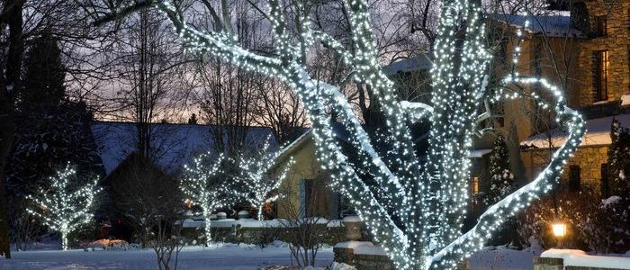 Holiday Landscape Lighting Tips By Lifescape