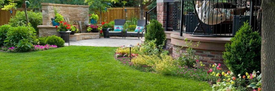 The Impact of Organic Fertilizers and Probiotics on Your Landscape