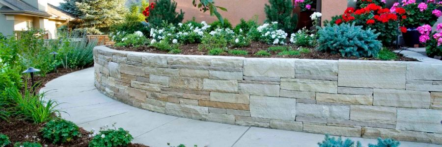 Budget-Friendly Spring Garden Enhancements