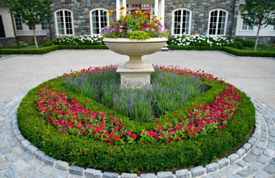 Its time to incorporate Seasonal Color into your Landscape