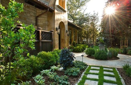 Featured in Colorado Homes & Lifestyles: How to Keep Your Landscape Happy