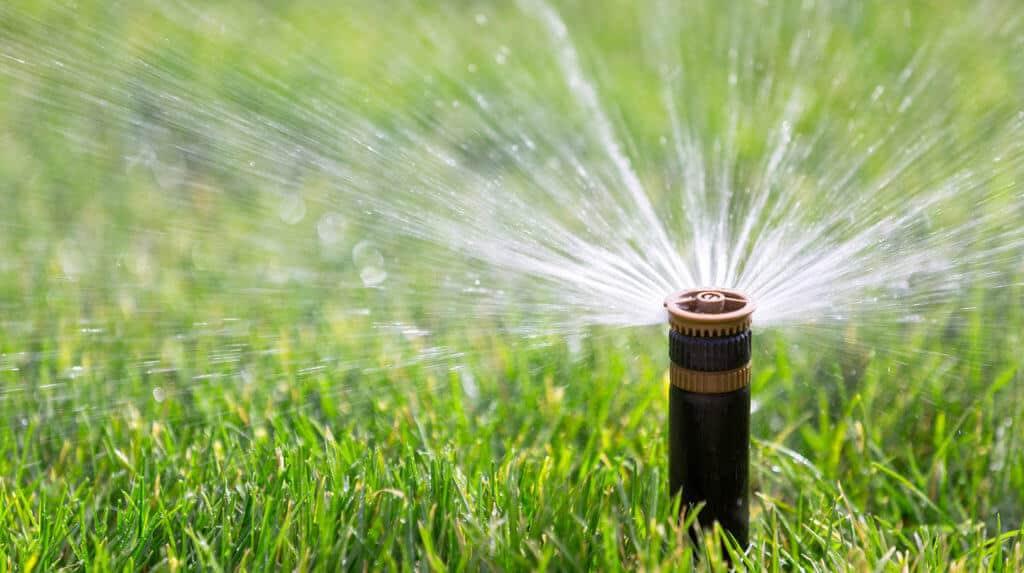 water-management