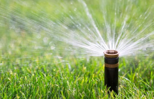 July is Irrigation Association Smart Irrigation Month.