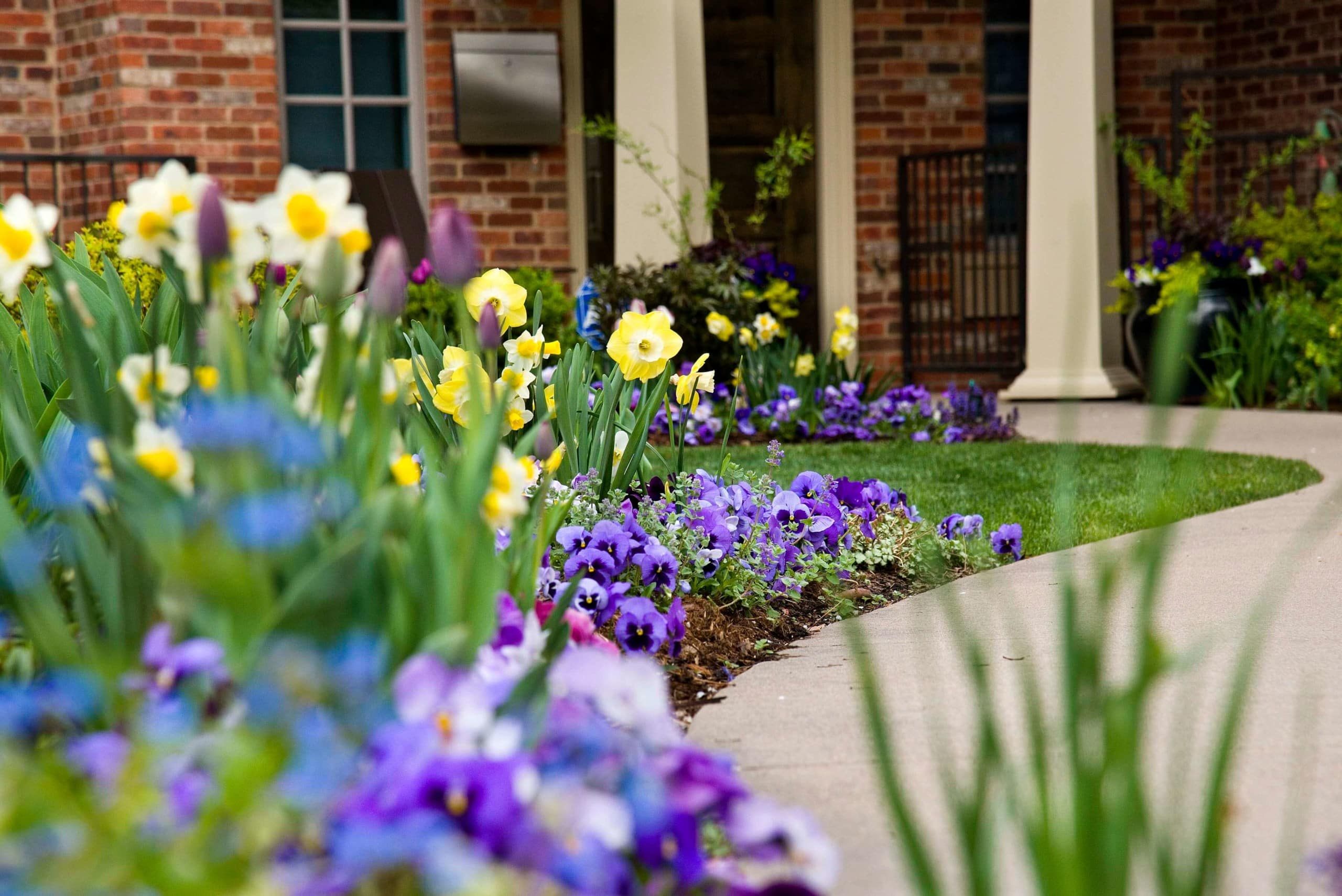Blog Featured – Spring is the season for bright, beautiful blooms!