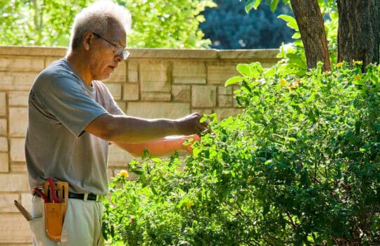 Personalized property care keeps your landscape investment green and growing.