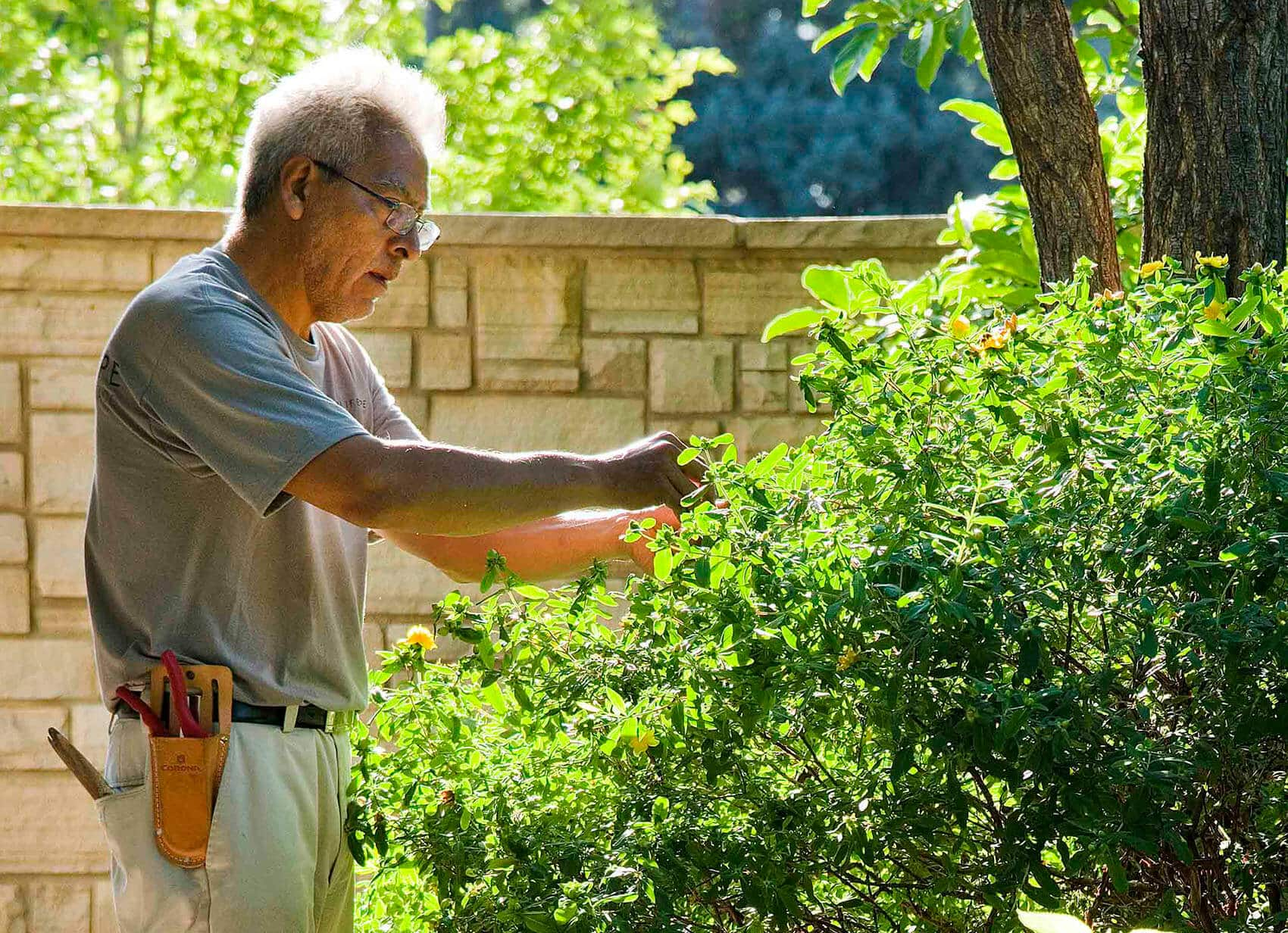 Blog Featured – Personalized property care keeps your landscape investment green and growing.