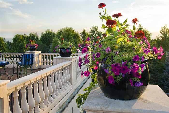 Blog Featured – Expert Advice: A 6-Step Guide to Container Plantings