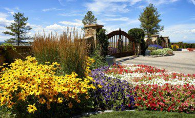 Blog Featured – Secrets to Breathtaking Seasonal Color in Your Colorado Landscape