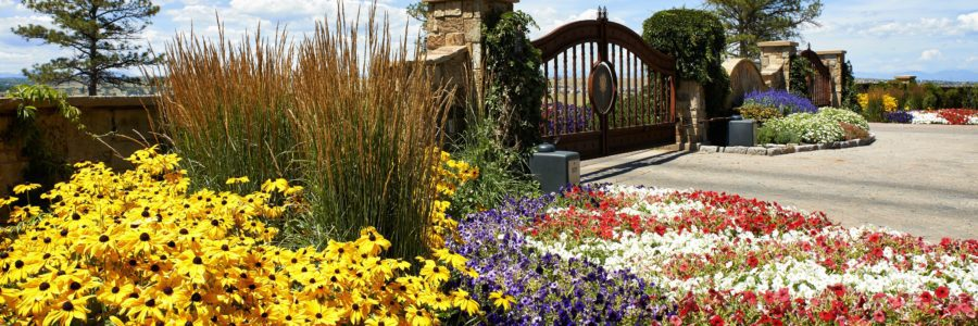 Secrets to Breathtaking Seasonal Color in Your Colorado Landscape