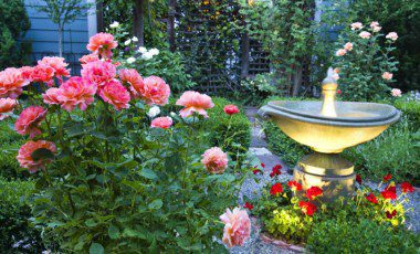 Blog Featured – Your Ultimate Guide to Spring Landscape Color
