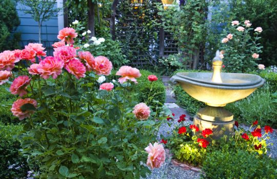 Your Ultimate Guide to Spring Landscape Color