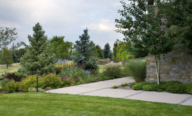 Blog Featured – 7 Tips to Bring your Landscape Back to Life
