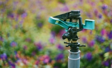 Blog Featured – Smart Irrigation Month: The Secret to Saving Water this Summer